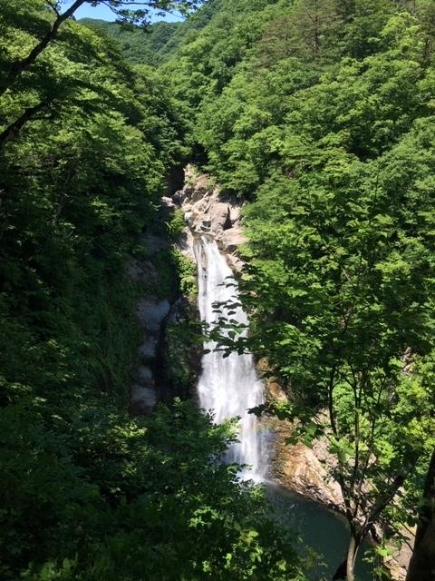 上から見た秋保大滝