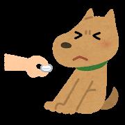 嫌がっている犬