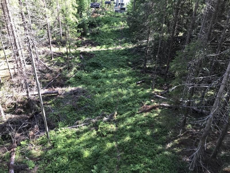 コリ国立公園リフト真下