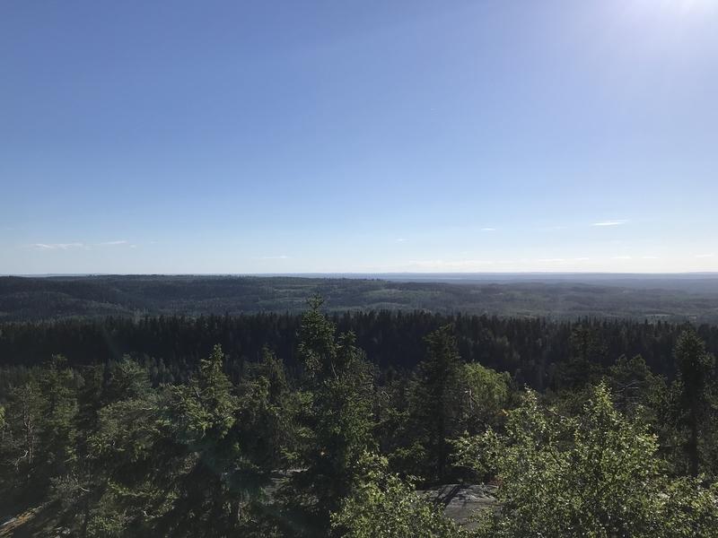 コリ国立公園森ビュー