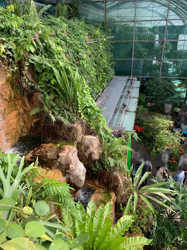 バタフライガーデン滝