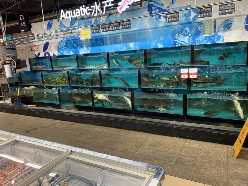 スーパーの鮮魚コーナー1