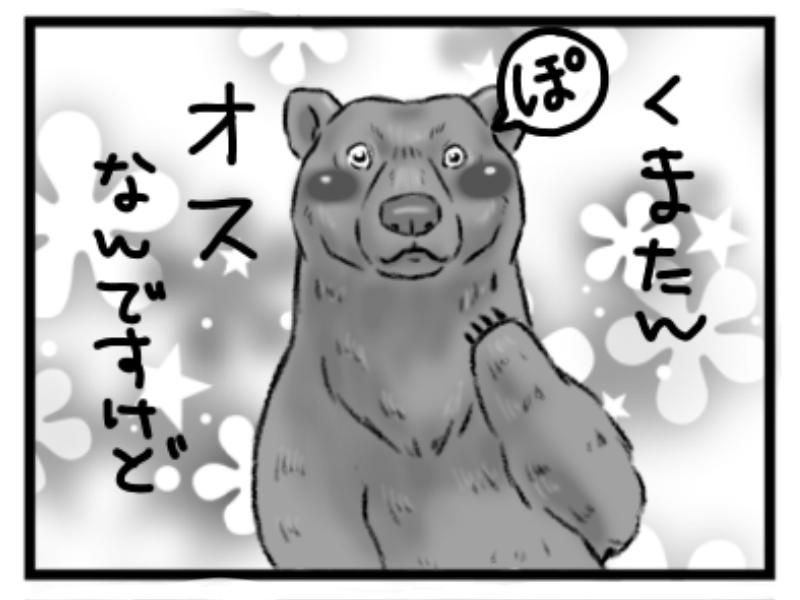 リアルな熊のイラスト