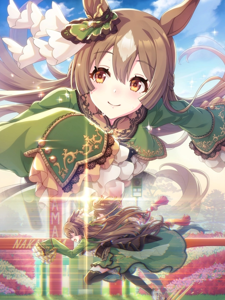 f:id:gachigachigatti:20210404174856j:plain