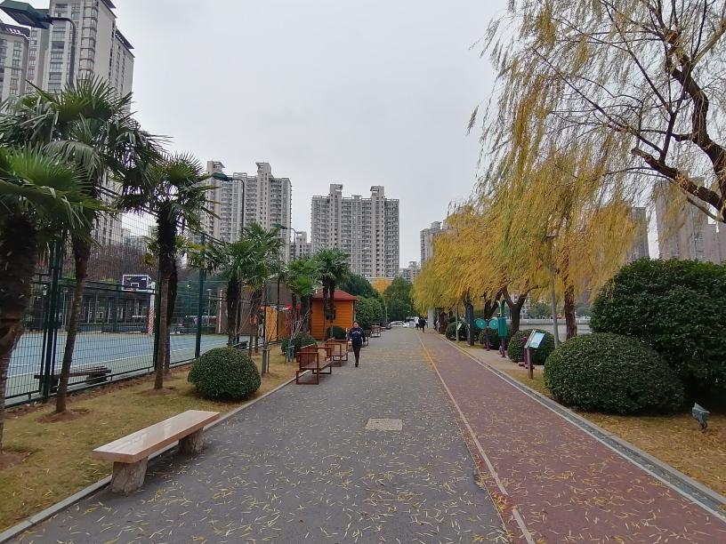 f:id:gacho_shanghai:20201230174201j:plain