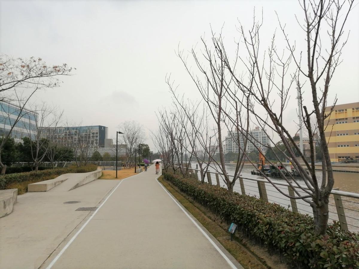 f:id:gacho_shanghai:20201230175703j:plain