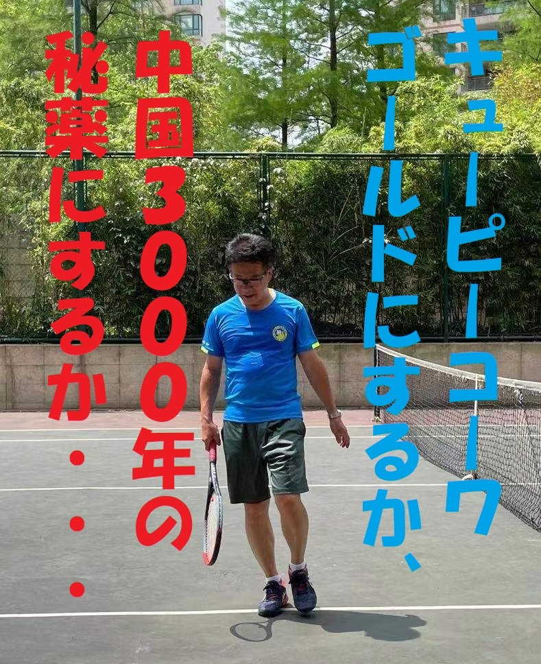 f:id:gacho_shanghai:20210509172254j:plain