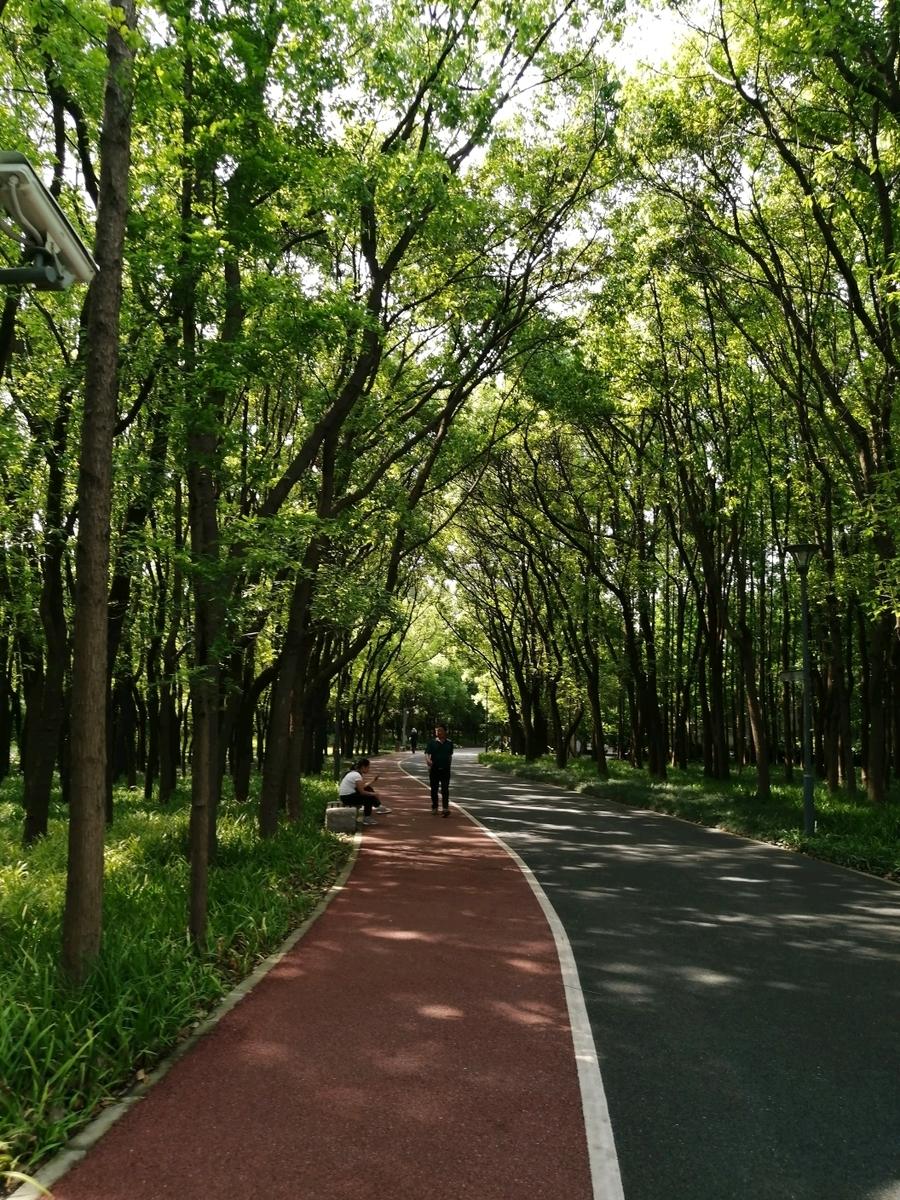 f:id:gacho_shanghai:20210603124610j:plain