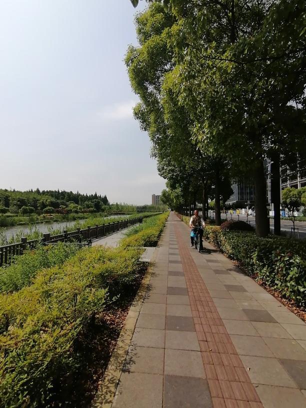 f:id:gacho_shanghai:20210603130758j:plain