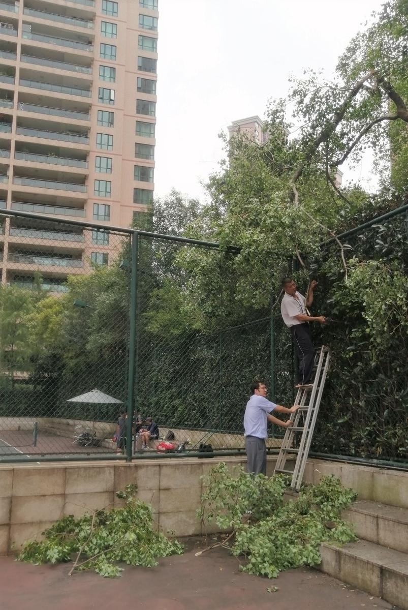 f:id:gacho_shanghai:20210801202322j:plain