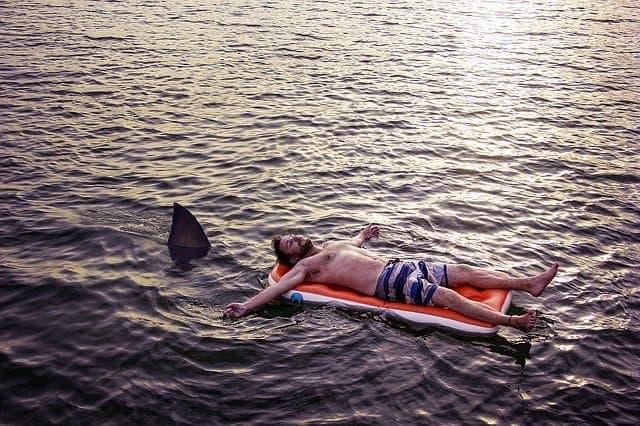サメ映画のイメージ01