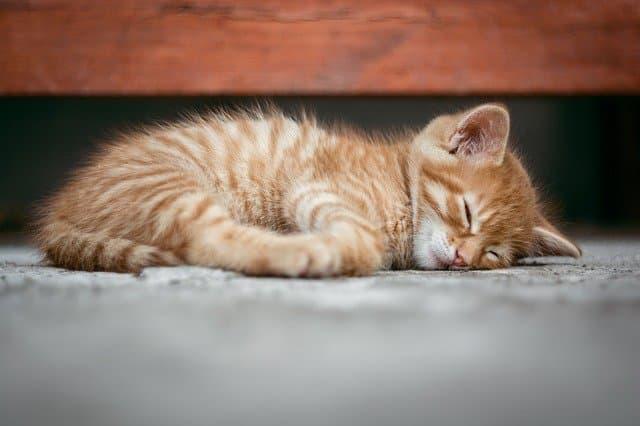 睡眠のイメージ01