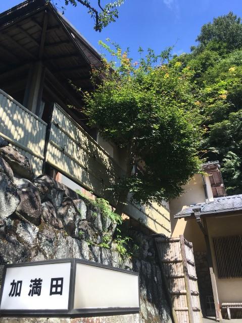 f:id:gaihakudaisuki:20171010212917j:image