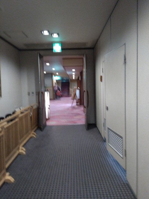 f:id:gaihakudaisuki:20190322234014j:image