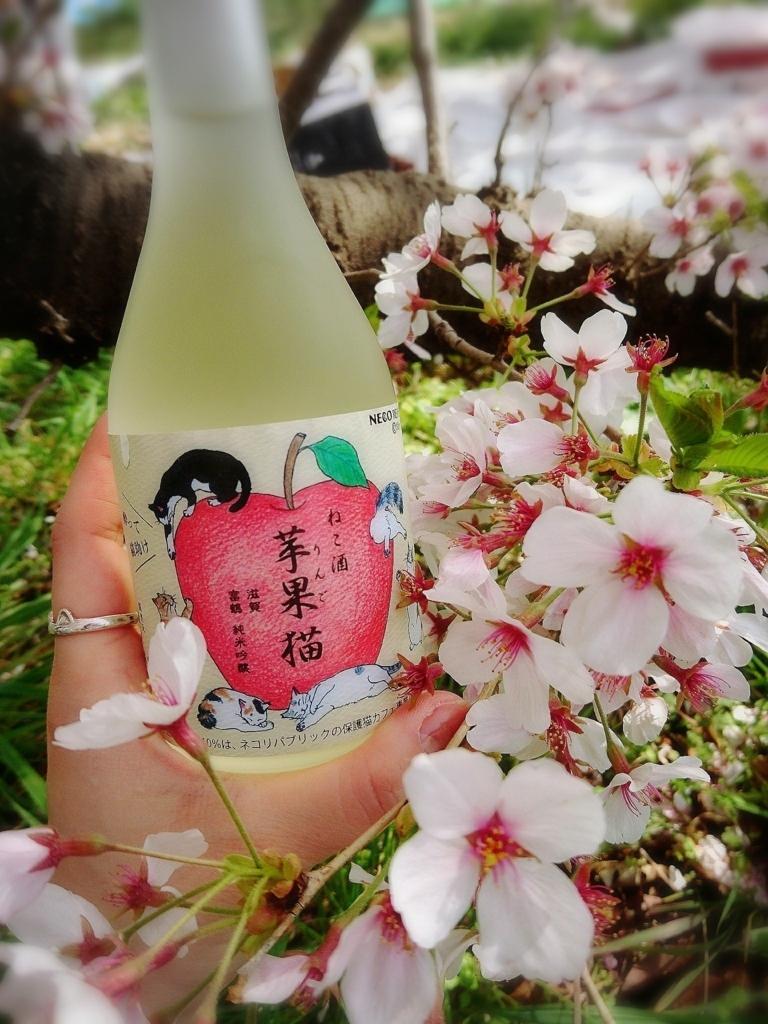 ねこ酒 苹果猫