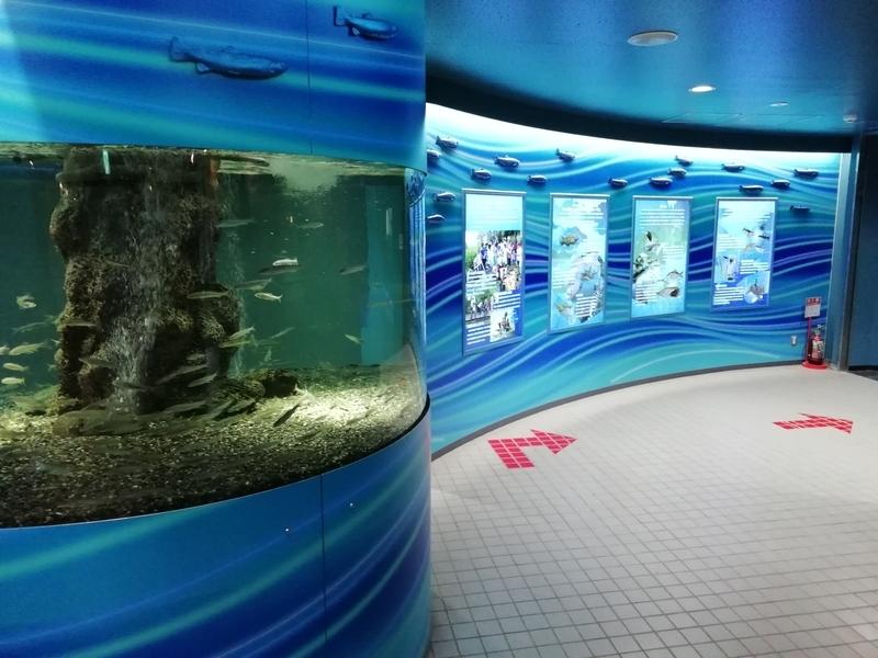 さいたま水族館の常設展示