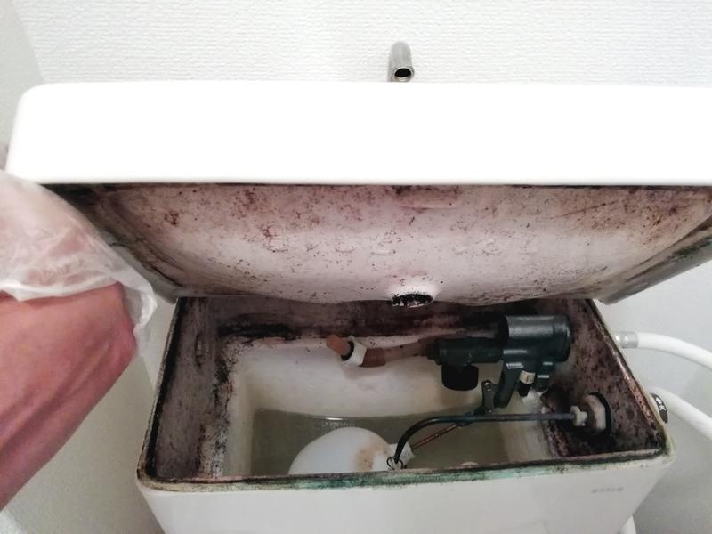 トイレのタンク内がドロドロに汚れていた。
