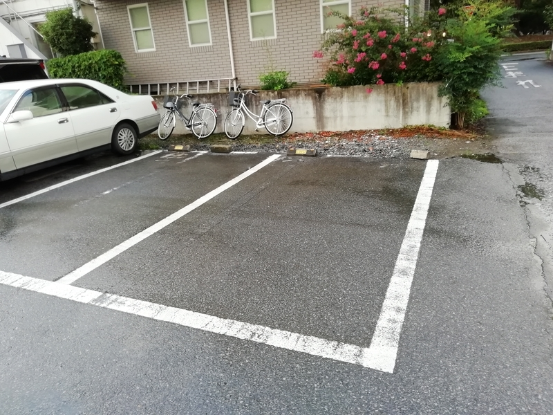 群馬県邑楽郡大泉町のツバメヤさんの駐車場