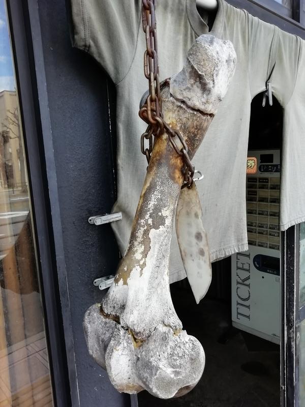 きくちひろきさんの店頭に吊るされた牛骨