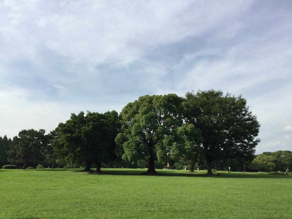 庄内緑地公園の芝生広場