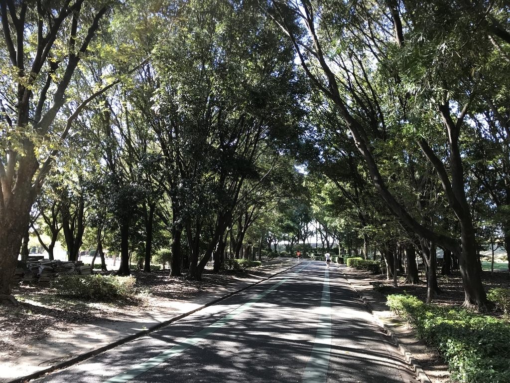 庄内緑地公園のランニングコース