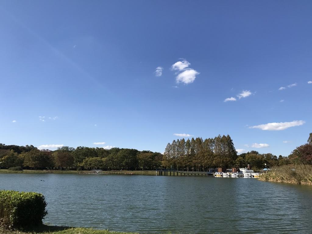 庄内緑地公園のボート池