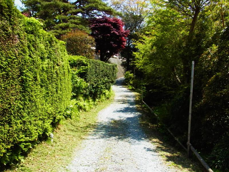 f:id:gakigakiga:20120514122454j:image