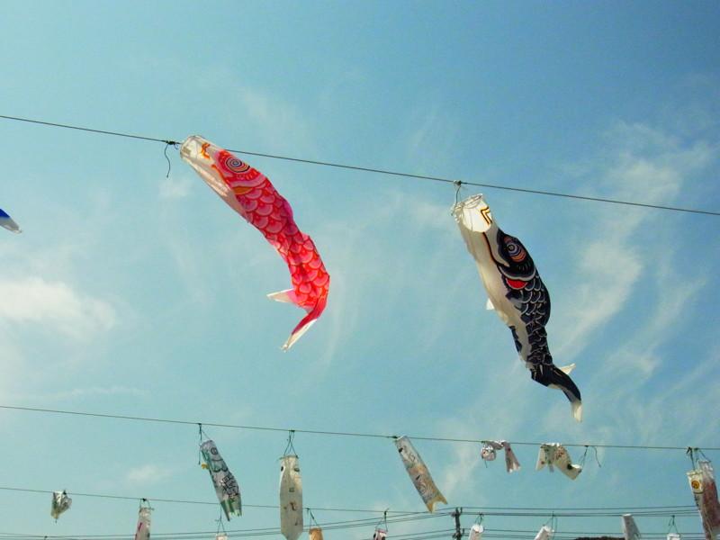 f:id:gakigakiga:20120514125540j:image