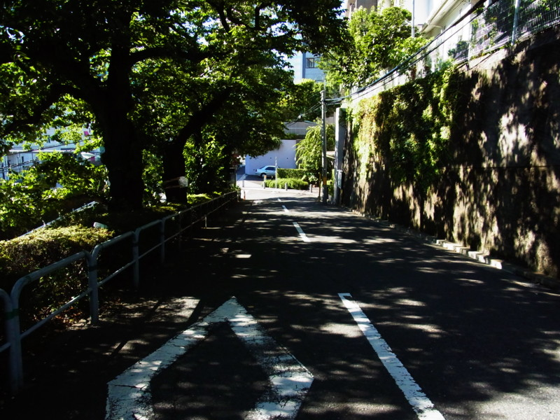 f:id:gakigakiga:20120821153513j:image