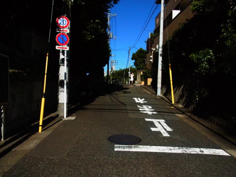 f:id:gakigakiga:20120821153653j:image