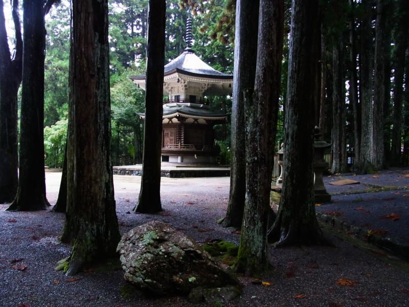 f:id:gakigakiga:20121018125111j:image