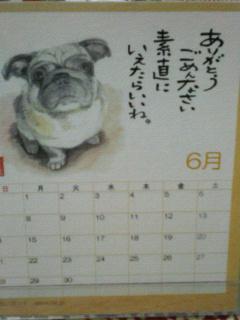 なんで屋カレンダー6月☆