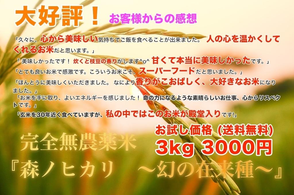 f:id:gaku-55:20190116122927j:plain