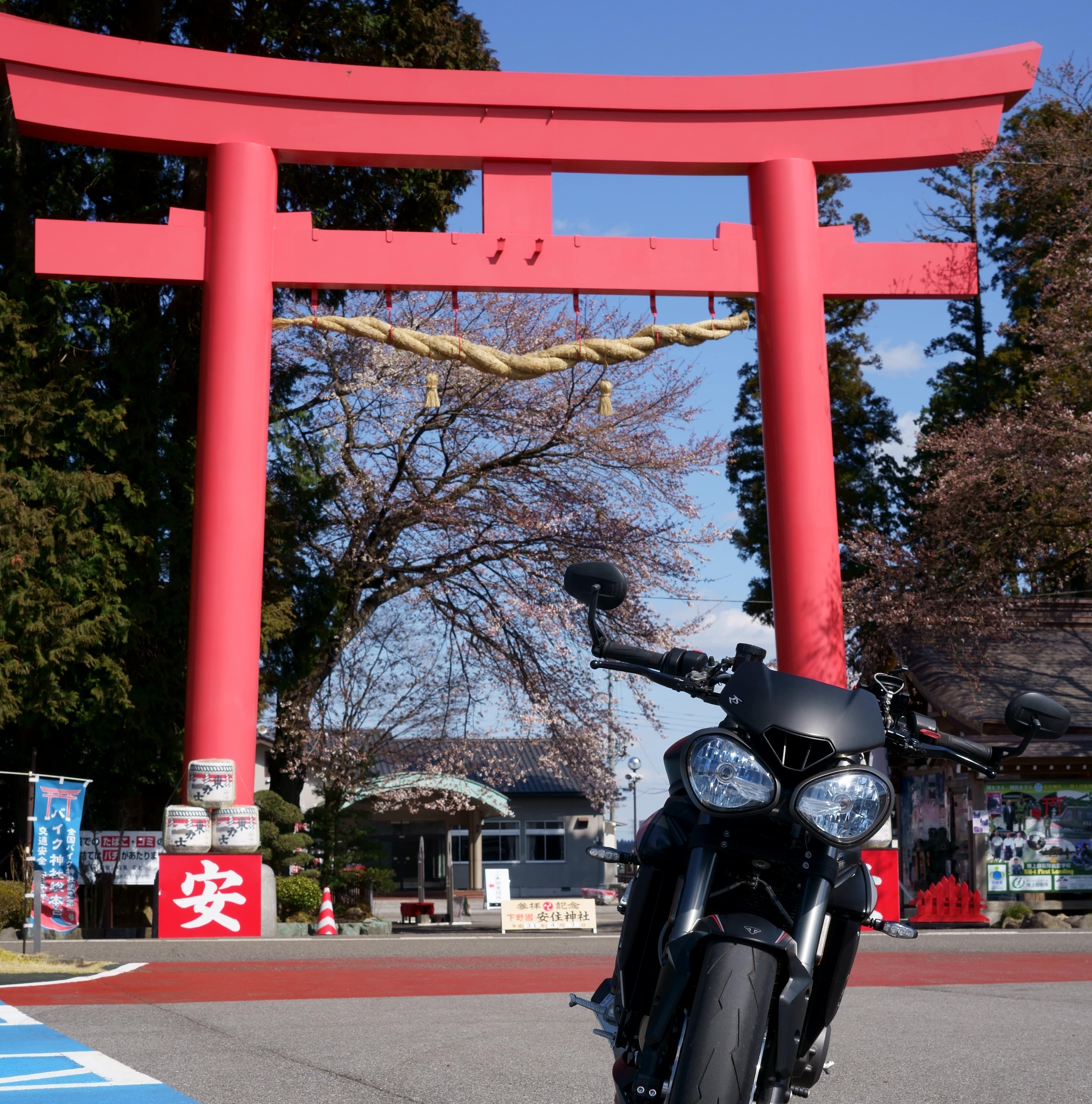 f:id:gaku-bikelife:20190409115733j:plain
