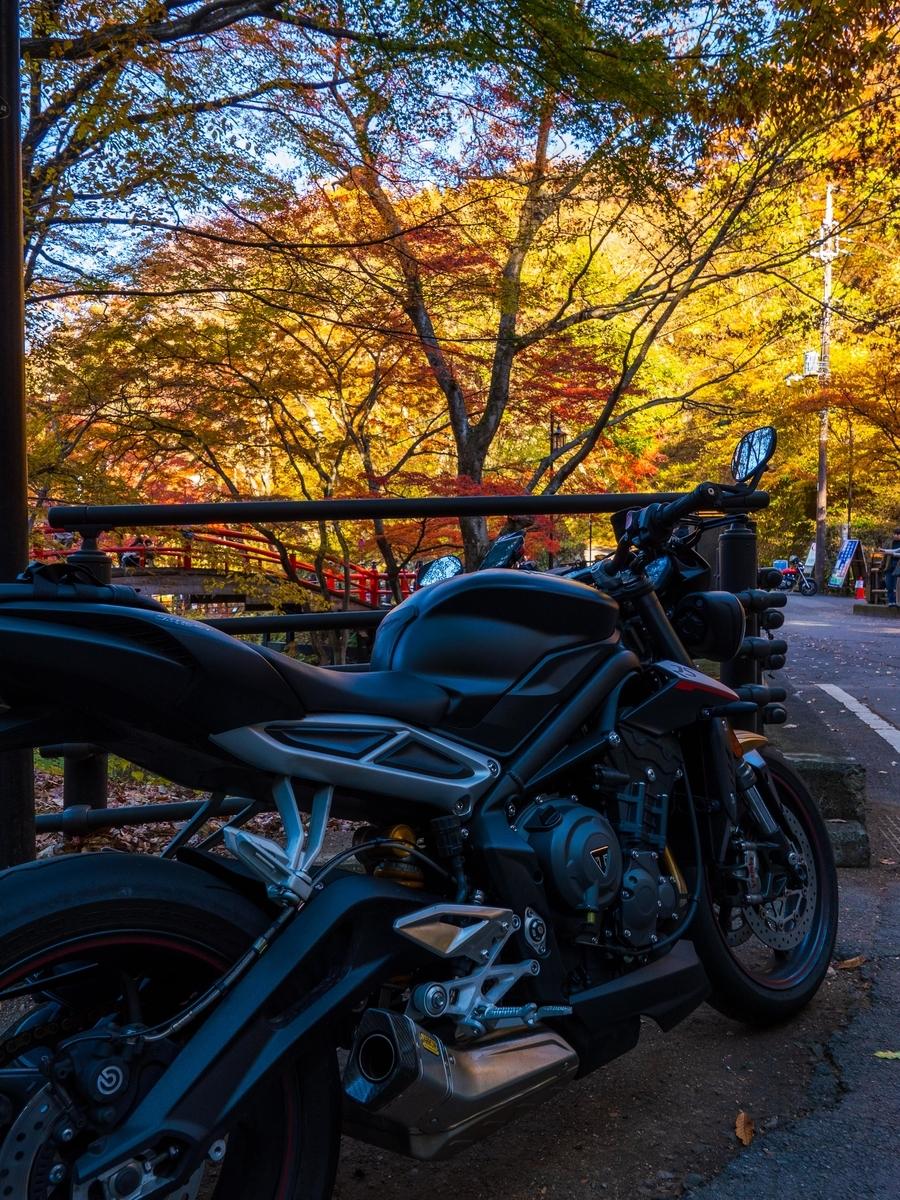 f:id:gaku-bikelife:20191122174736j:plain