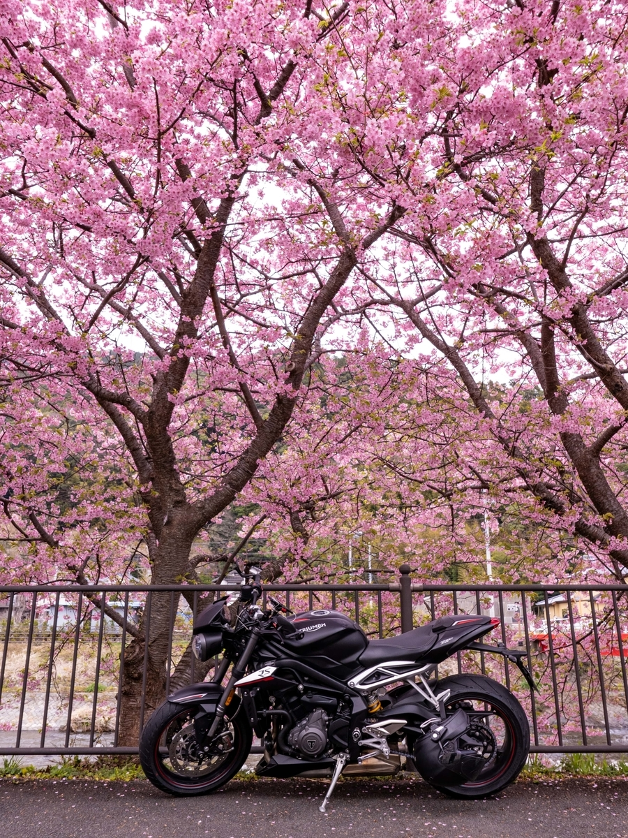 f:id:gaku-bikelife:20200218113608j:plain