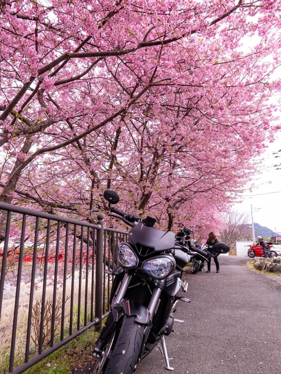 f:id:gaku-bikelife:20200218113734j:plain