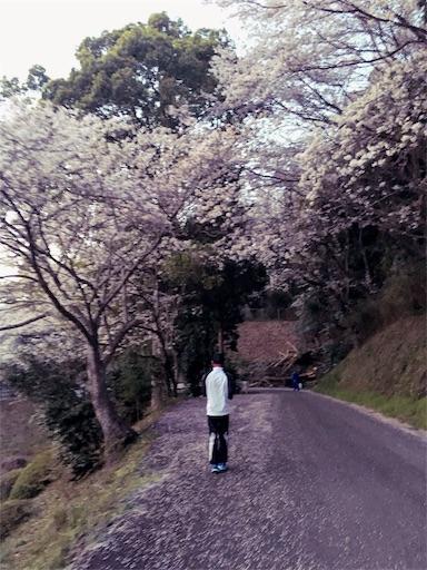 f:id:gaku-fleur296:20180401213847j:image