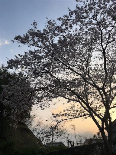 f:id:gaku-fleur296:20180401214009j:image