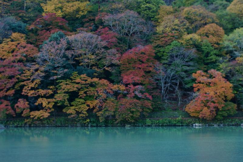 f:id:gaku226:20121121063705j:image