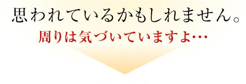 f:id:gaku_19830506:20170111010941j:image