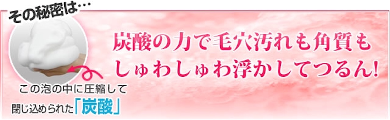 f:id:gaku_19830506:20170111231738j:image