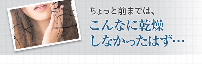 f:id:gaku_19830506:20170112210758j:image
