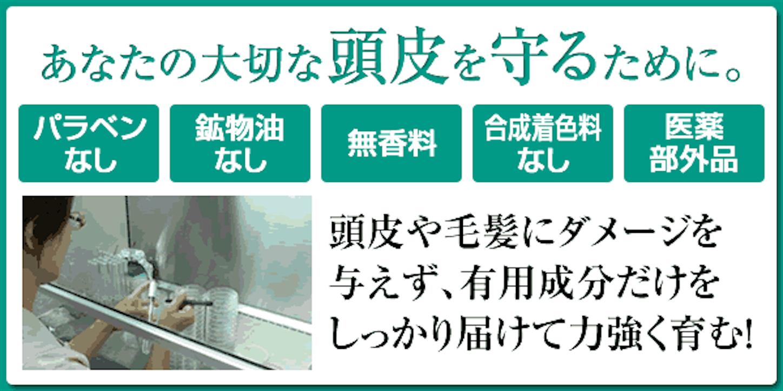 f:id:gaku_19830506:20170116100246p:image