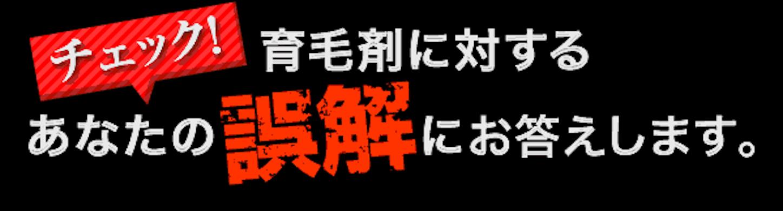 f:id:gaku_19830506:20170116100316p:image