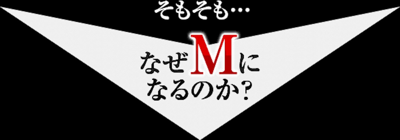 f:id:gaku_19830506:20170116101227p:image
