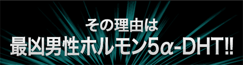 f:id:gaku_19830506:20170116101232p:image