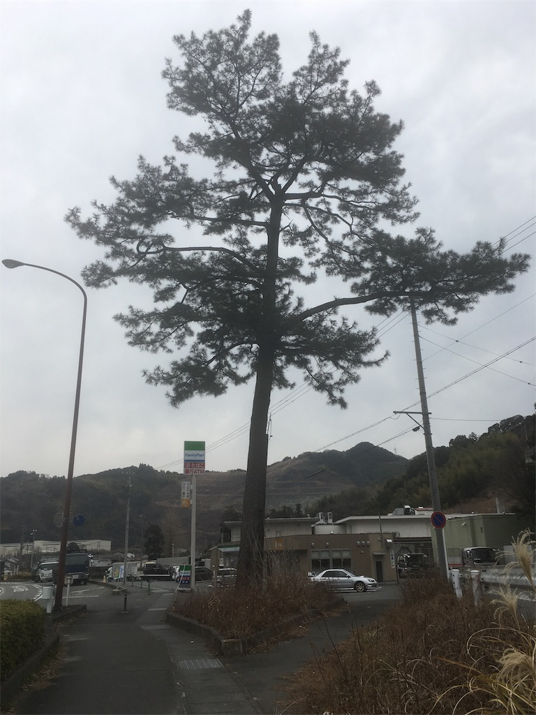 f:id:gakublog:20180221103636j:image