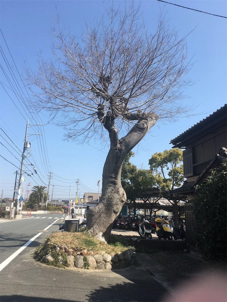 f:id:gakublog:20180226112059j:image