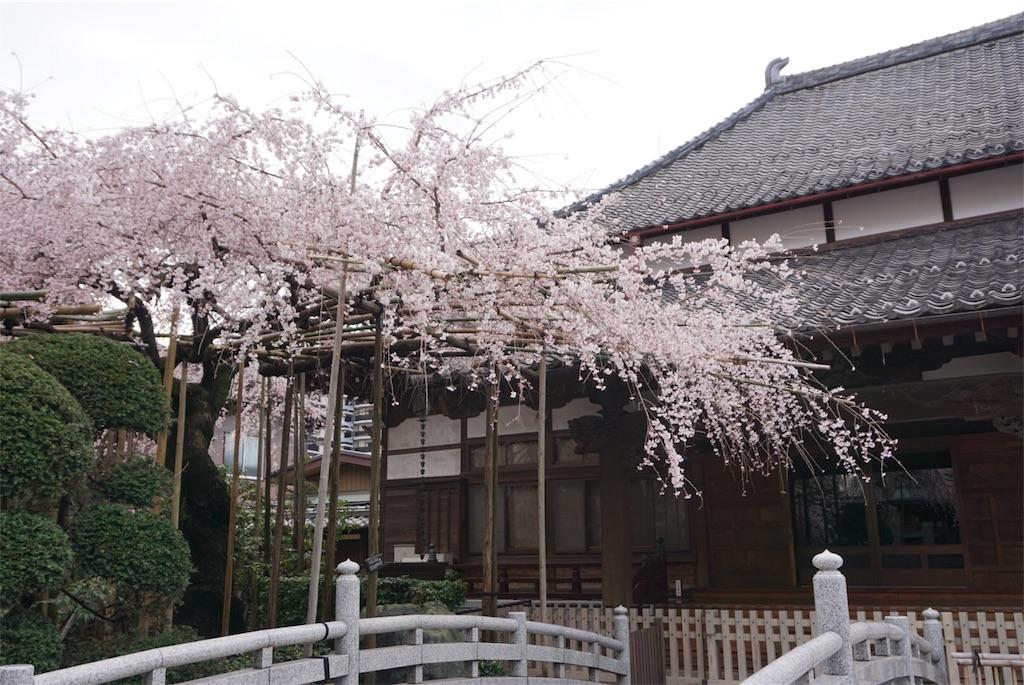 f:id:gakublog:20180425133424j:image